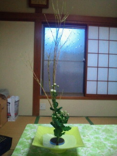 昨日のお花