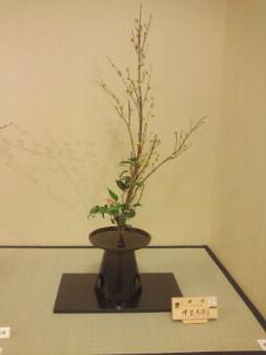 先生のお花