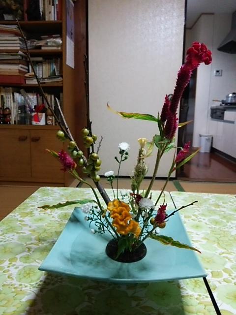 1ヶ月振りにお花